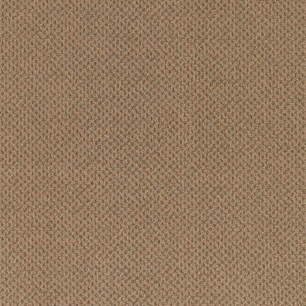 Carpet Sample Market Share Color Heather Moon Pattern 8 In X