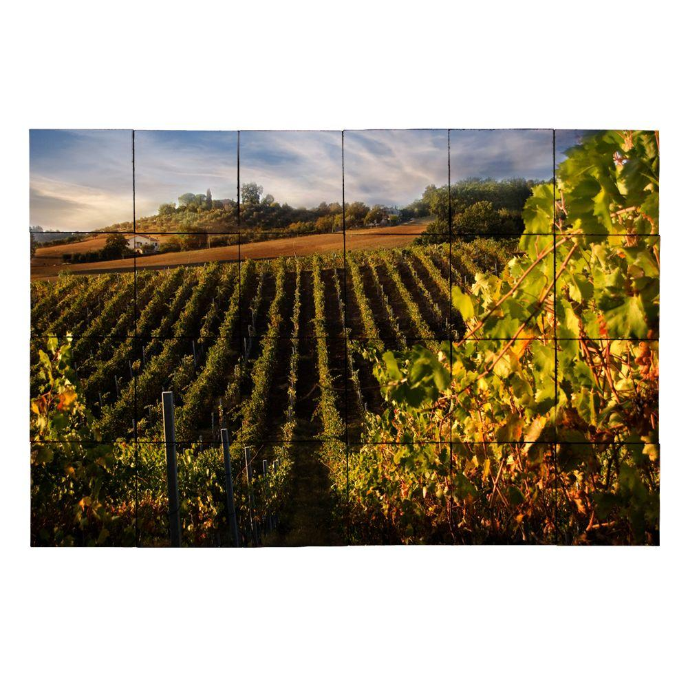 Vineyard3 36 in. x 24 in. Tumbled Marble Tiles (6 sq.