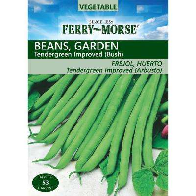 Bean Tendergreen Improved Seed