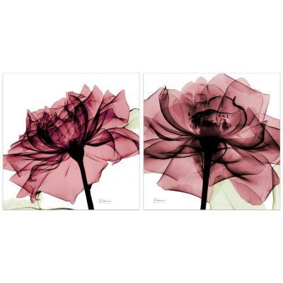 """""""Chianti Rose"""" Unframed Free Floating Tempered Art Glass Flower Wall Art Print 24 in. x 24 in. (Set of 2)"""