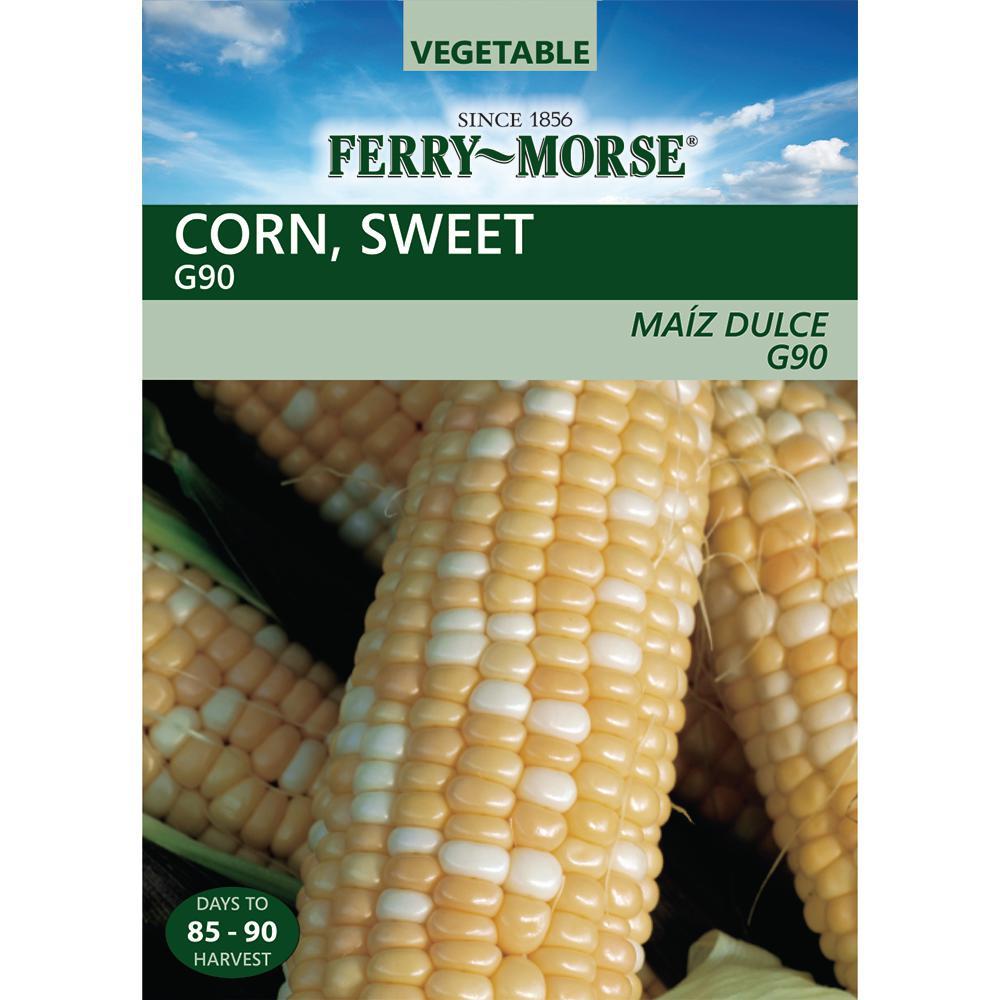 Corn Sweet G90 Seed