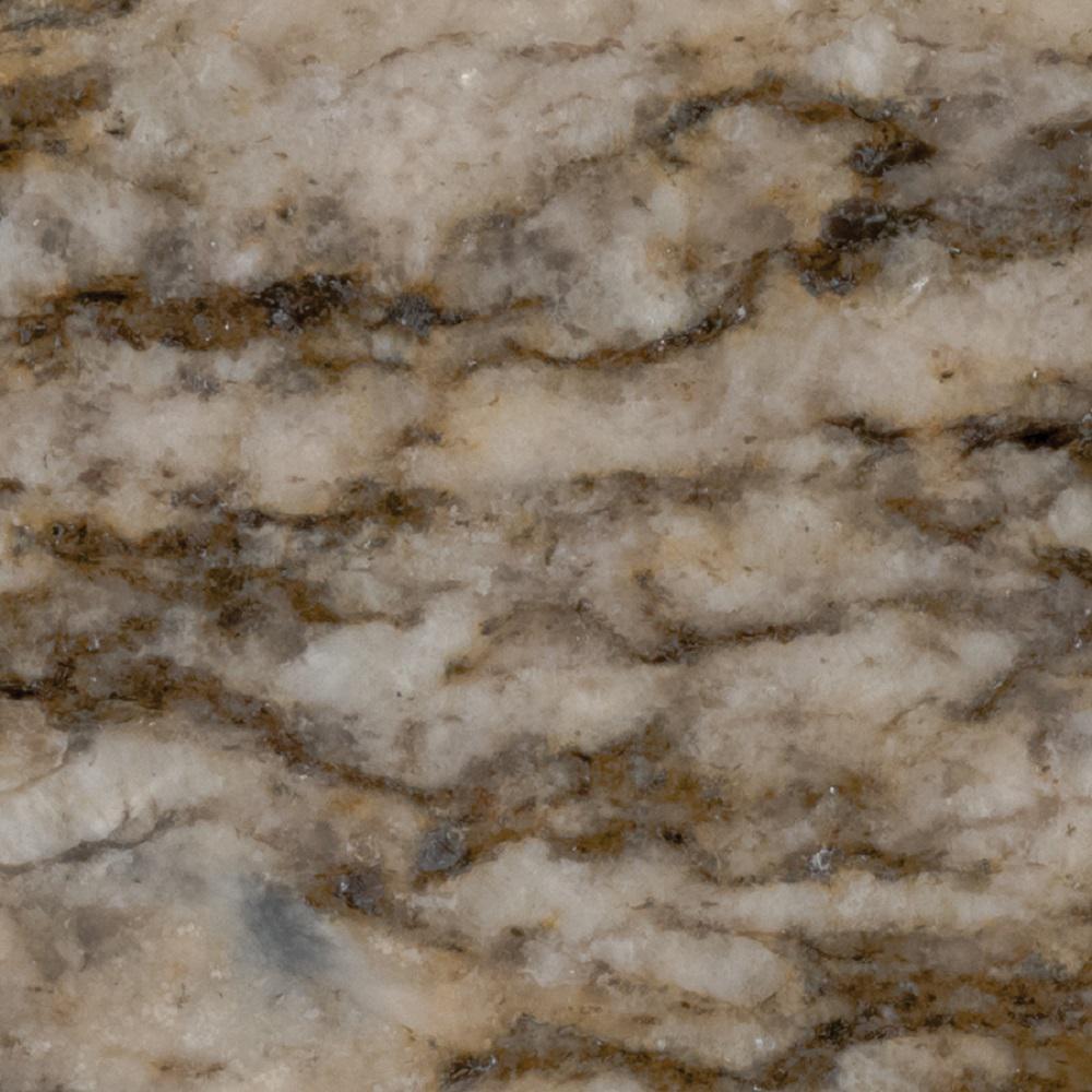 STONEMARK 3 in. x 3 in. Granite Countertop Sample in Savanna Gold