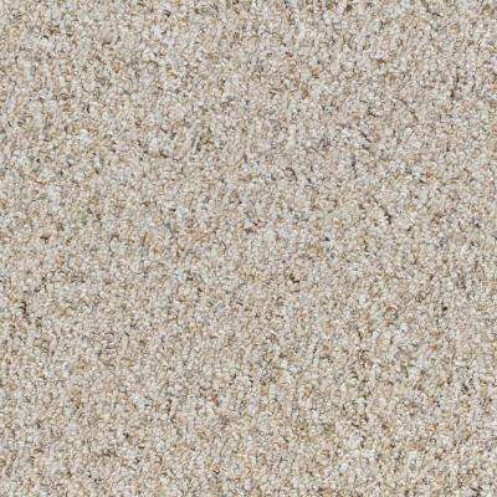 Speeding - Color Pebble Path Loop 12 ft. Carpet
