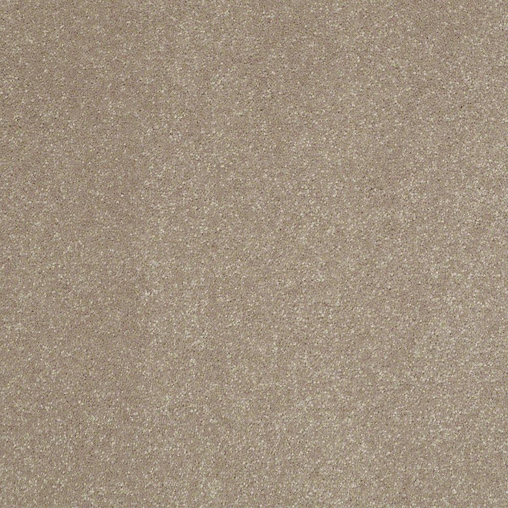 Home Decorators Collection Full Bloom I - Color Cafe Au Lait Texture 12 ft. Carpet