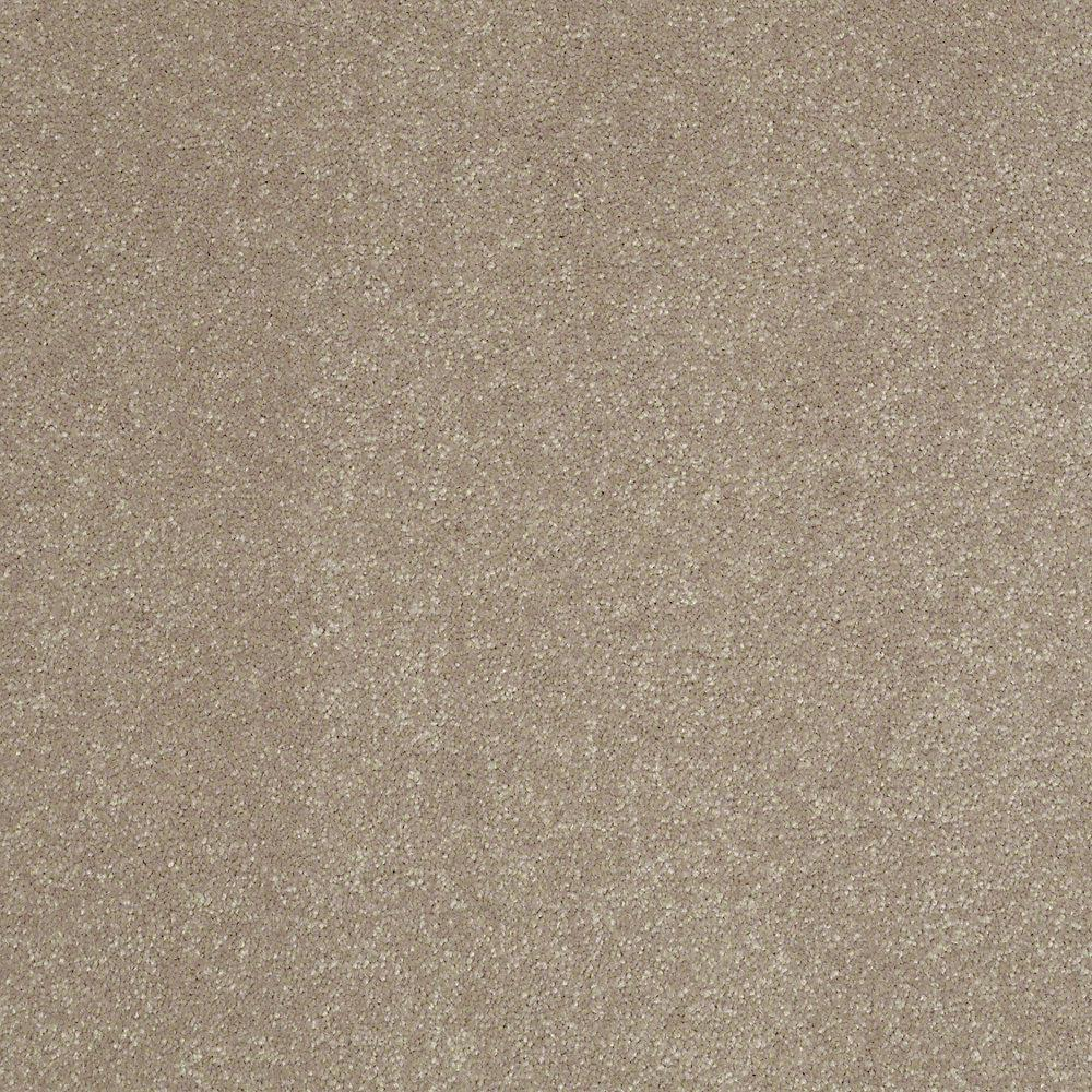 Home Decorators Collection Full Bloom II - Color Cafe Au Lait Texture 12 ft. Carpet