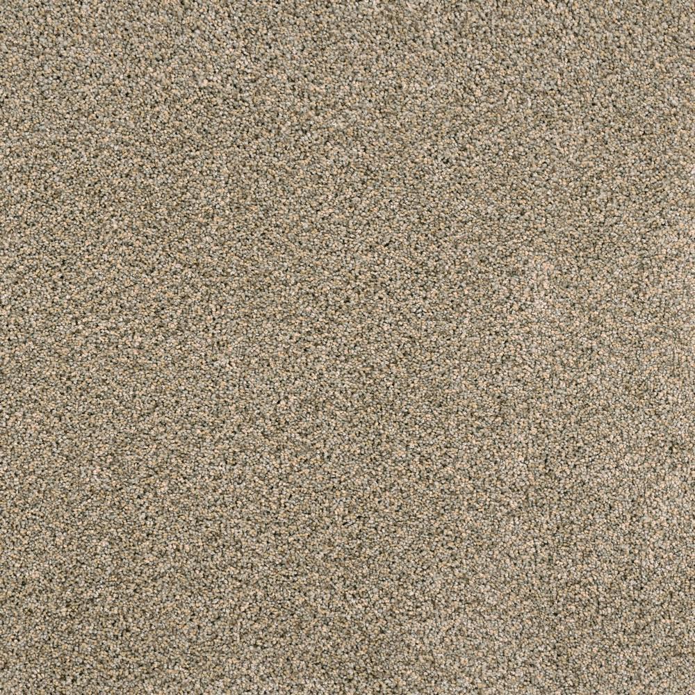 Home Decorators Collection Bays Mountain - Color Scout Texture 12 ft. Carpet