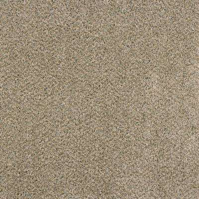 Bays Mountain - Color Scout Texture 12 ft. Carpet
