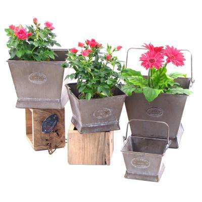 Square Iron Planters with Moving Handles (Set of 4)