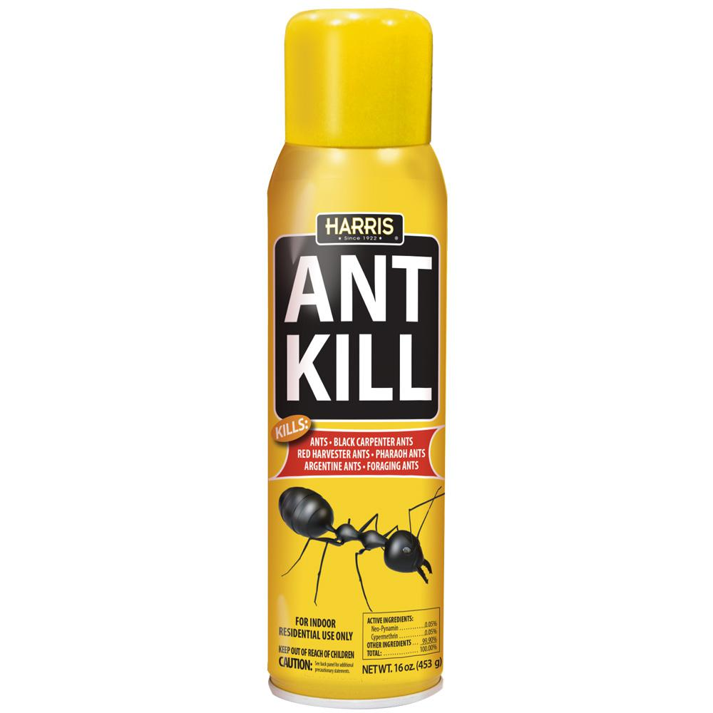 16 oz. Ant Kill Spray