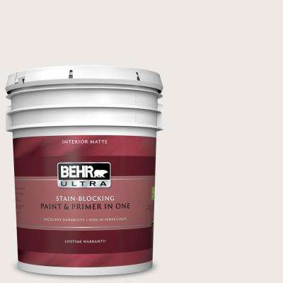 5 gal. #BWC-06 Solid Opal Matte Interior Paint and Primer in One