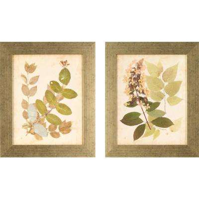 17.5 in. x 14.5 in. Nature's Collage Printed Framed Wall Art (Set of 2)