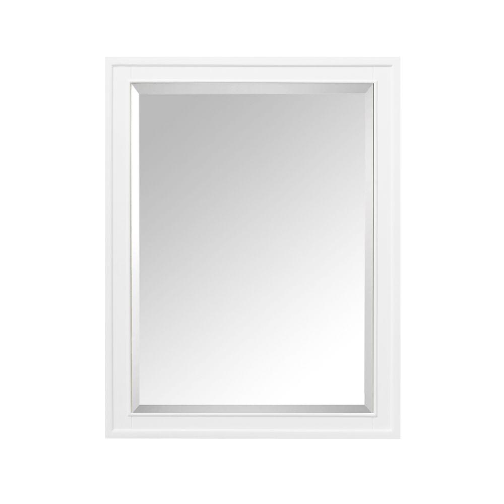 Avanity Madison 24 in. W x 32 in. H x 5-1/10 in. D Framed Surface ...