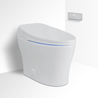 Muse iWash 1-Piece 1.28 GPF Single Flush Elongated Toilet and Bidet in White, Seat Included