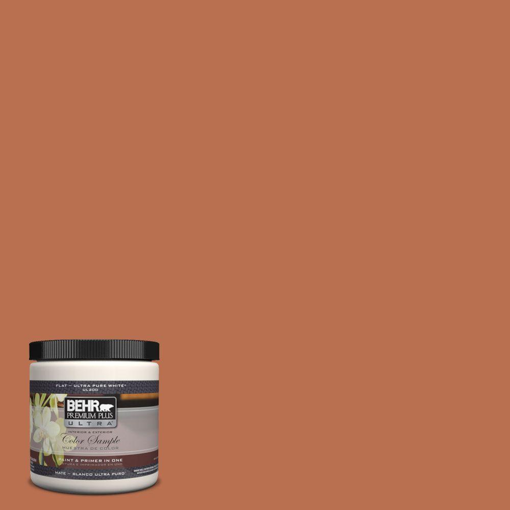 BEHR Premium Plus Ultra 8 oz. #230D-6 Iced Tea Interior/Exterior Paint Sample