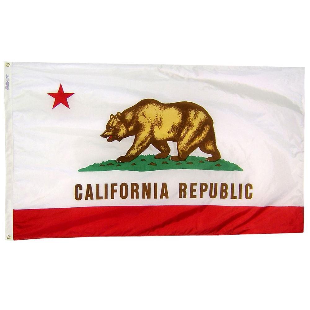 2 ft. x 3 ft. Nylon California State Flag