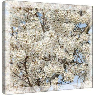 15 in. x 15 in. ''Cherry Blossoms 7'' Printed Canvas Wall Art