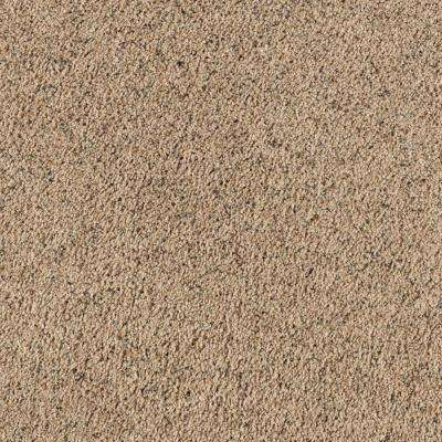 Carpet Sample - Shining Moments III (F) - Color Gold Coast Texture 8 in x 8 in