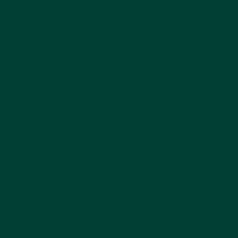 Andersen A Series Exterior Color Sample In Forest Green 9118774
