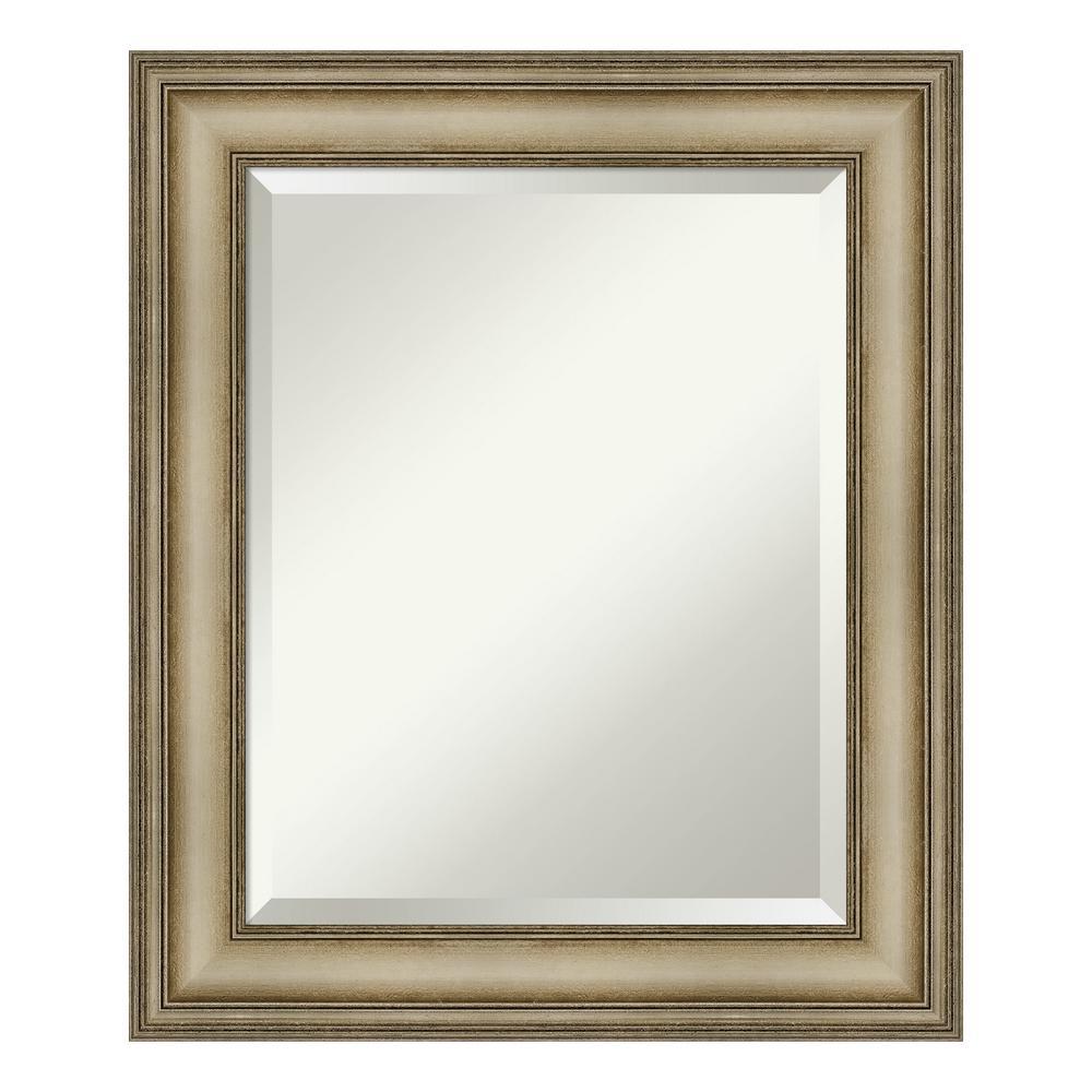 Amanti Art Mezzanine Antique Silver Decorative Wall Mirror DSW4093105