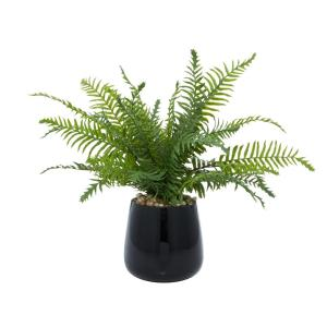 19 in. L x 17 in. H Fern Plant in a Black Shiny Vase with Rocks for Filler