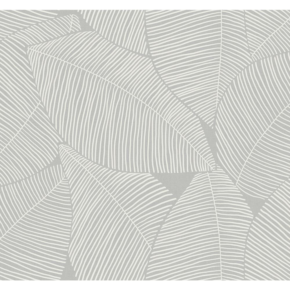 Summer Magnolia Daydream Gray Wallpaper