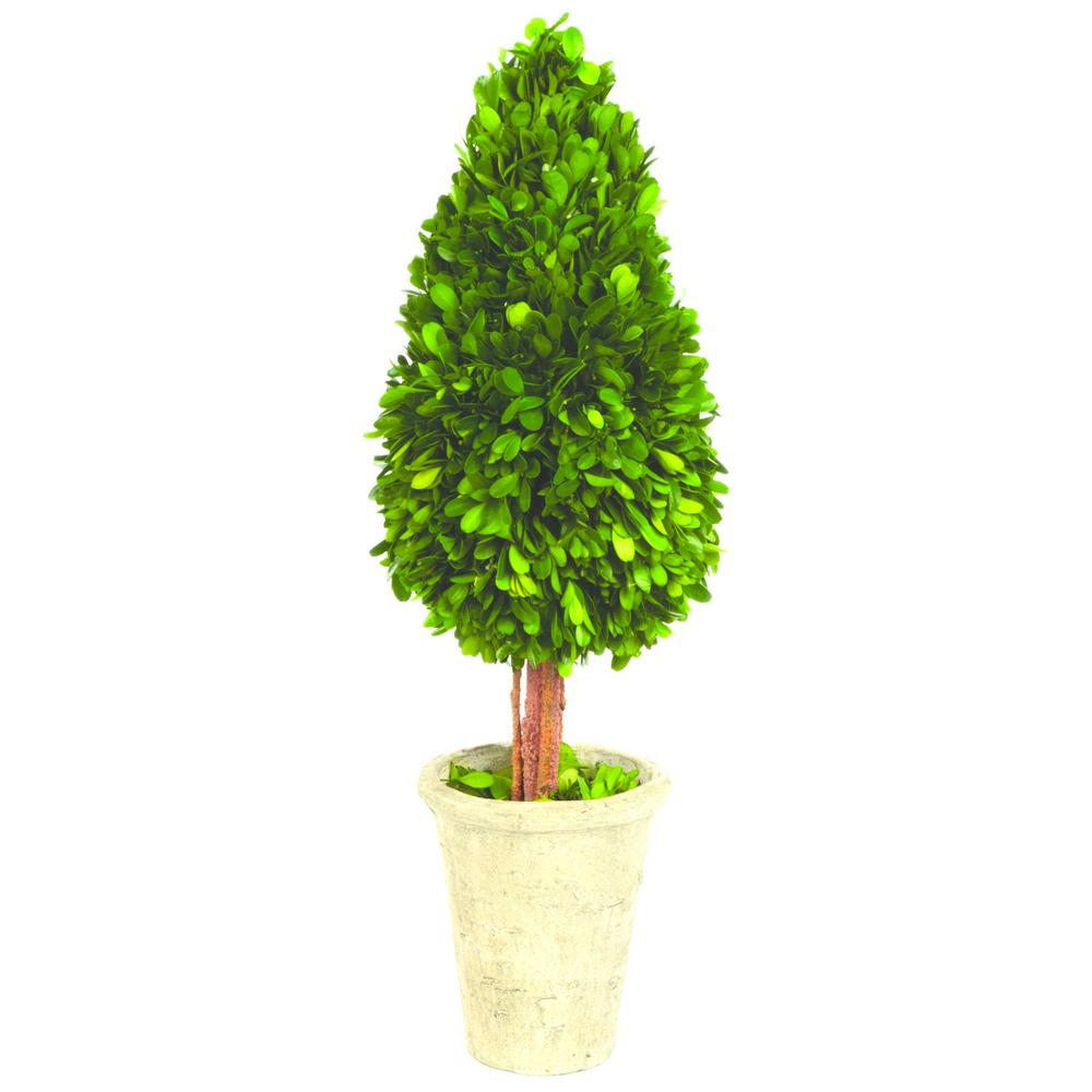 Boxwood Collection 22 in. Preserved Boxwood Water Drop Topiary