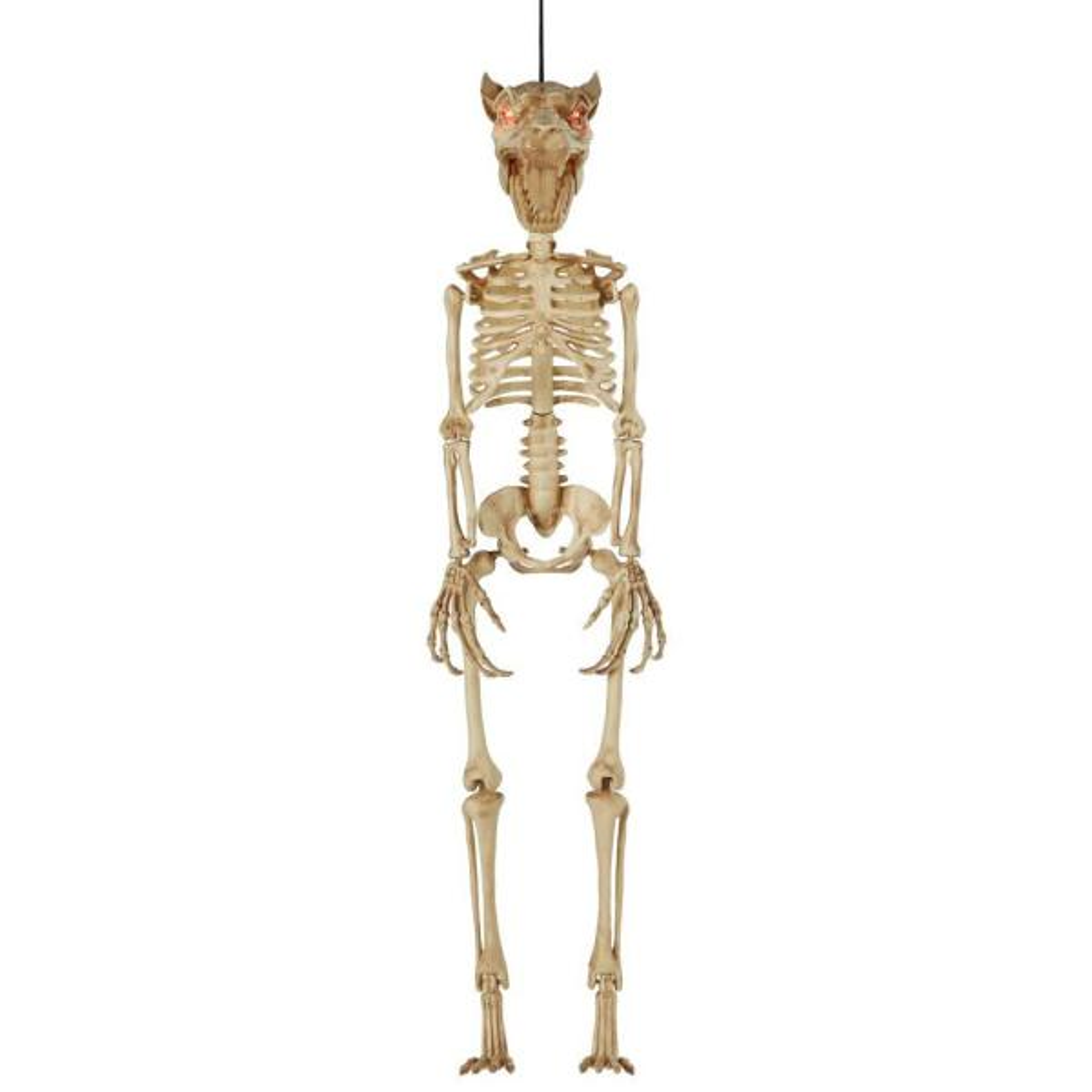 3 ft. LED Hanging Wolf Skeleton