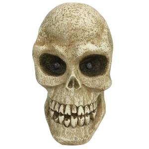 10 in. Halloween Led Lighted Skull
