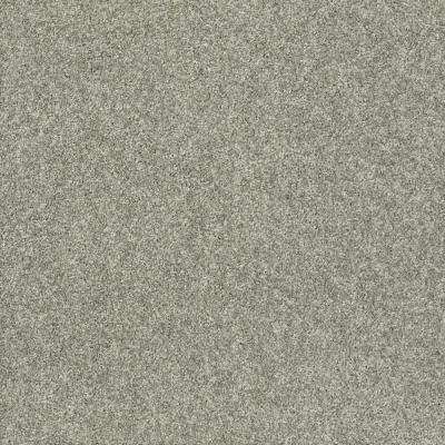 Stay Toned Charcoal Biscotti Texture 24 in. x 24 in. Carpet Tile (8 Tiles/Case)