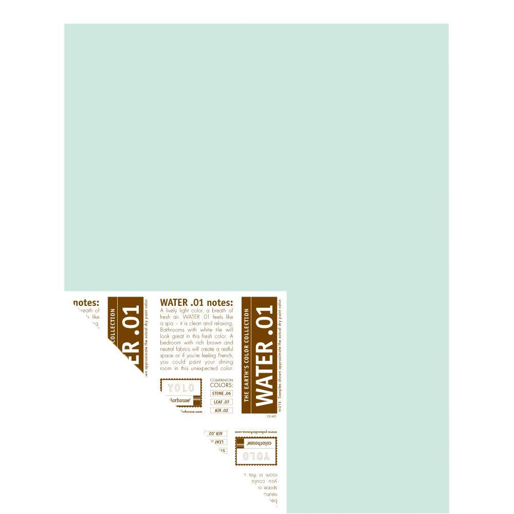 YOLO Colorhouse 12 in. x 16 in. Water .01 Pre-Painted Big Chip Sample