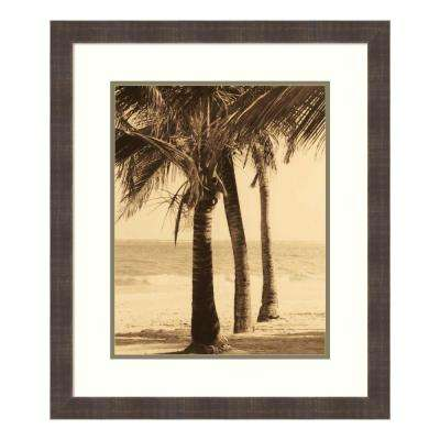 """Palm Beach II"" by Dennis Kelly Framed Wall Art"