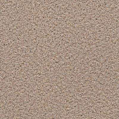Carpet Sample - Expeditious II - Color Fine Art Texture 8 in. x 8 in.