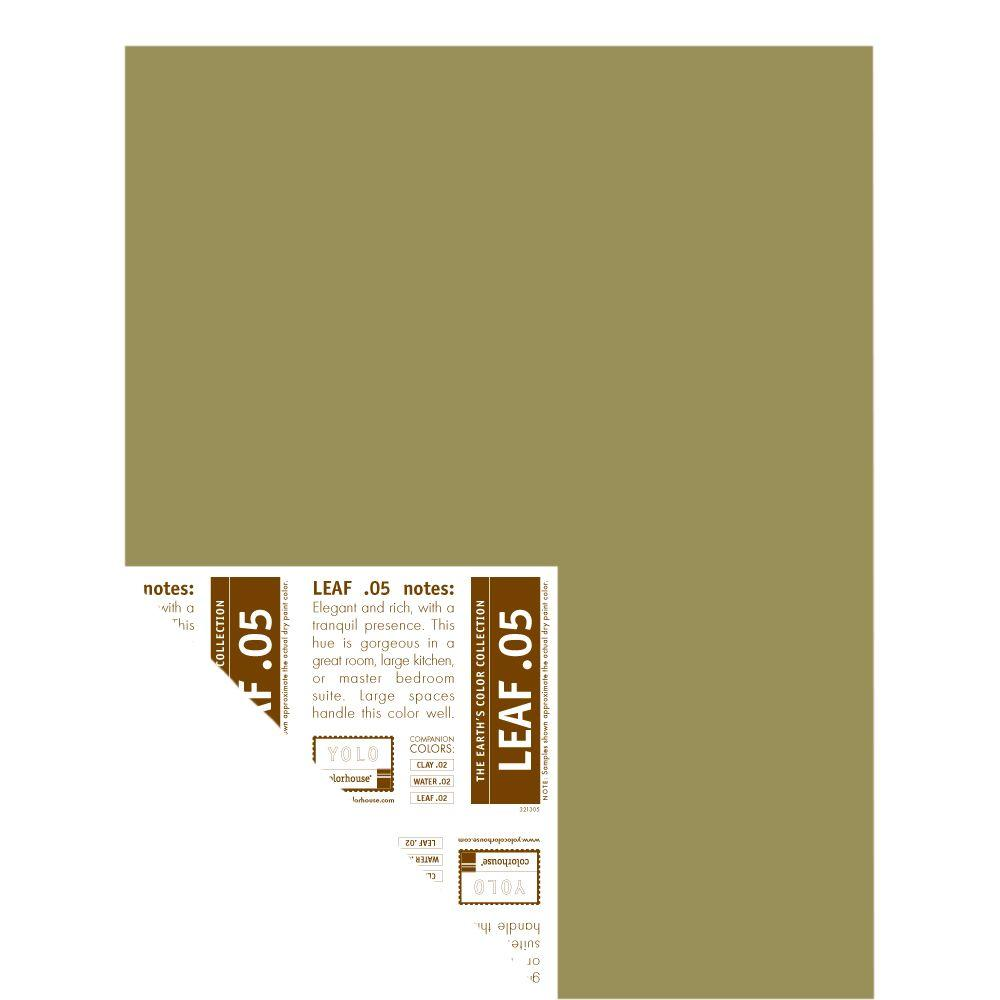 YOLO Colorhouse 12 in. x 16 in. Leaf .05 Pre-Painted Big Chip Sample