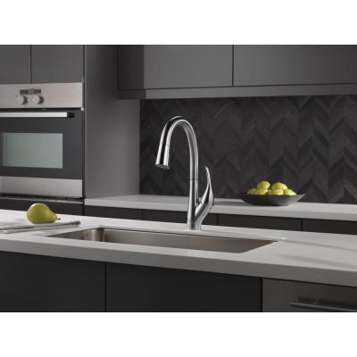 Esque Single-Handle Pull-Down Sprayer Kitchen Faucet with ShieldSpray Technology in Arctic Stainless