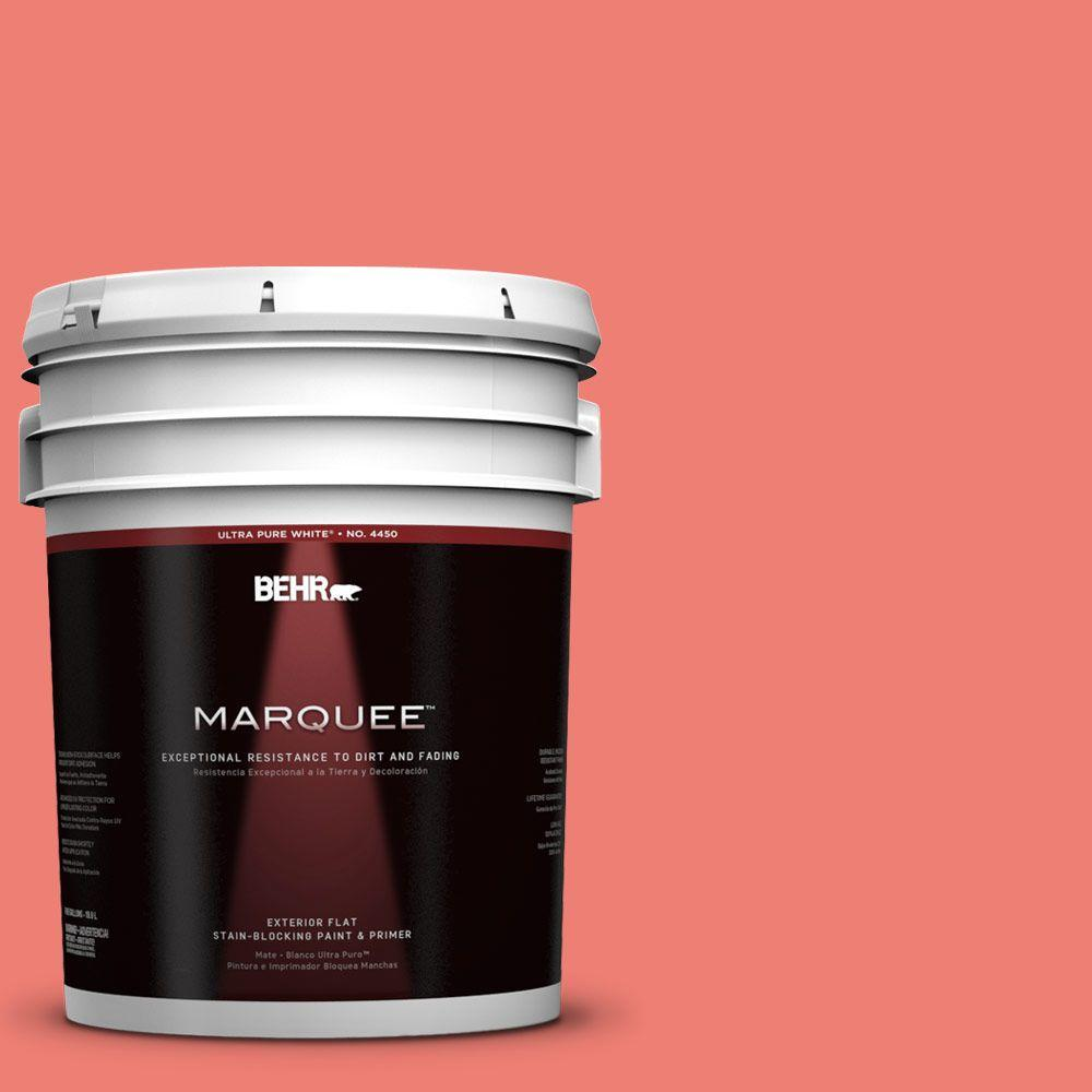 5-gal. #170B-5 Youthful Coral Flat Exterior Paint