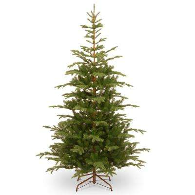 7.5 ft. Norwegian Spruce Tree with Clear Lights