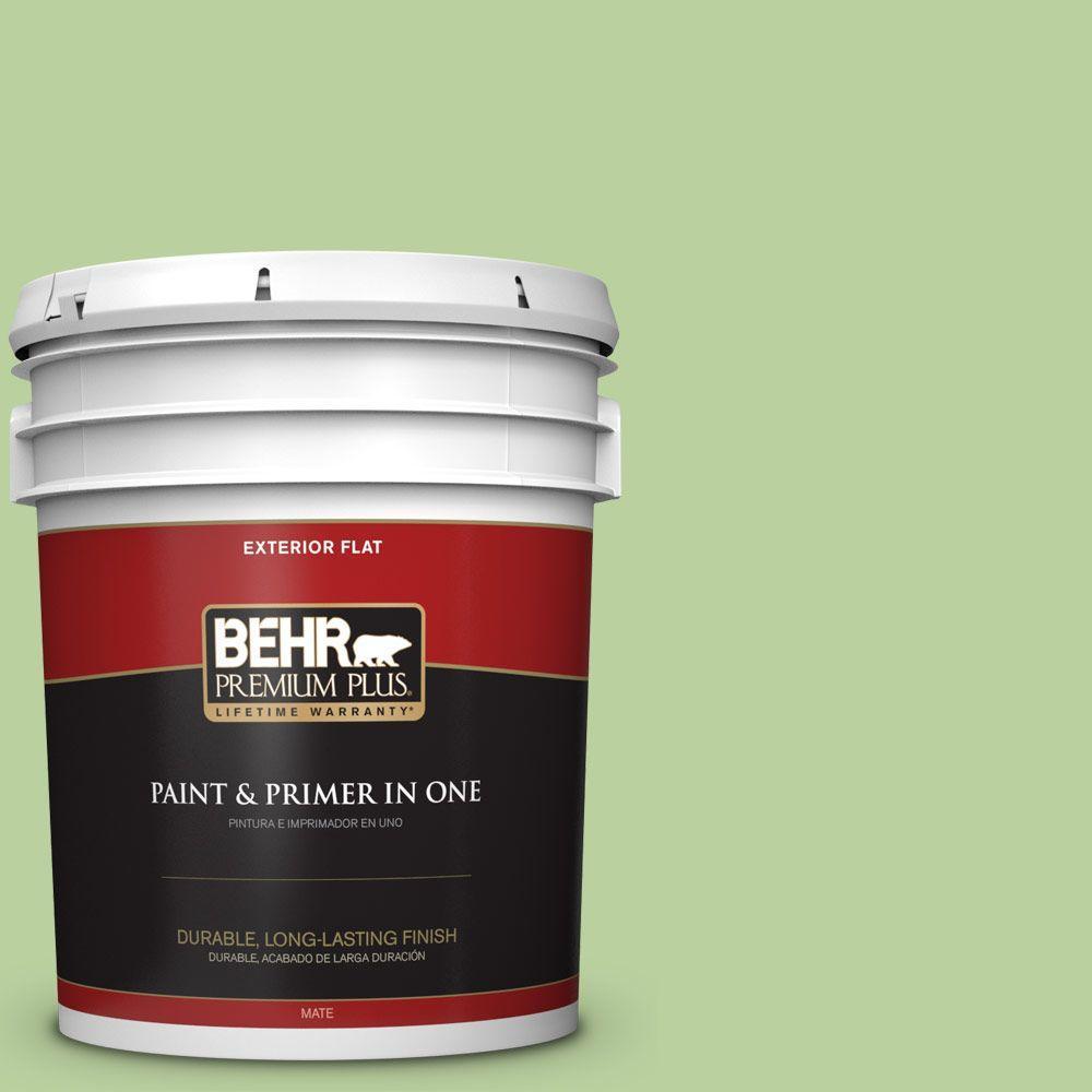 BEHR Premium Plus 5-gal. #P380-4 Four Leaf Clover Flat Exterior Paint, Greens