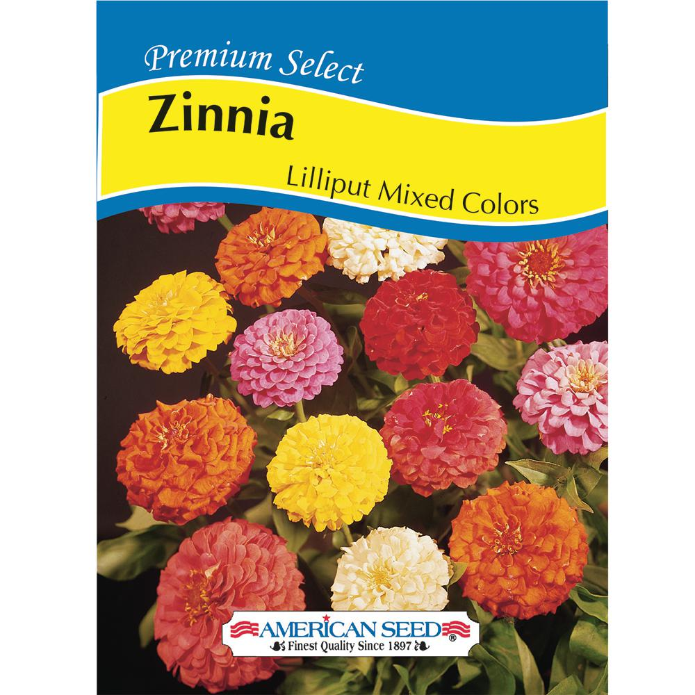 American Seed Zinnia Lilliput Mix Colors AM Seed-6012 - The Home Depot