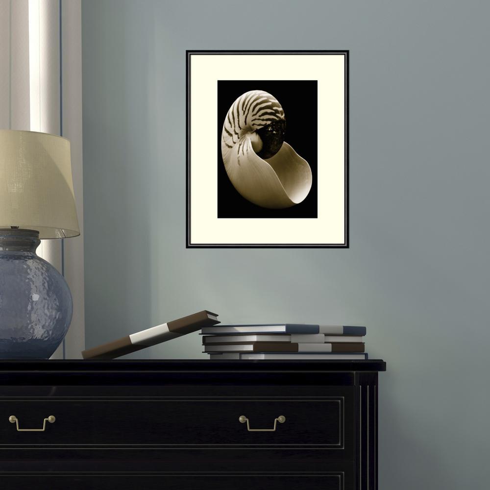 "11 in. W x 14 in. H ""Nautilus"" by Sondra Wampler"