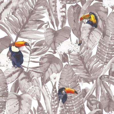 Toucan Newspaper Self-Adhesive Removable Wallpaper
