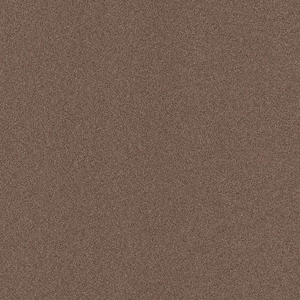 Arcadian - Color Chestnut Texture Indoor/Outdoor 12 ft. Carpet