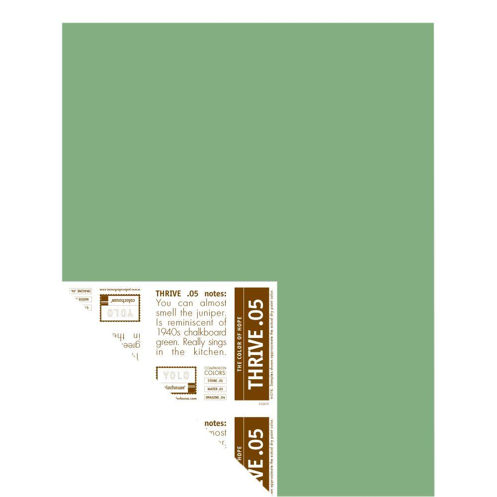 YOLO Colorhouse 12 in. x 16 in. Thrive .05 Pre-Painted Big Chip Sample