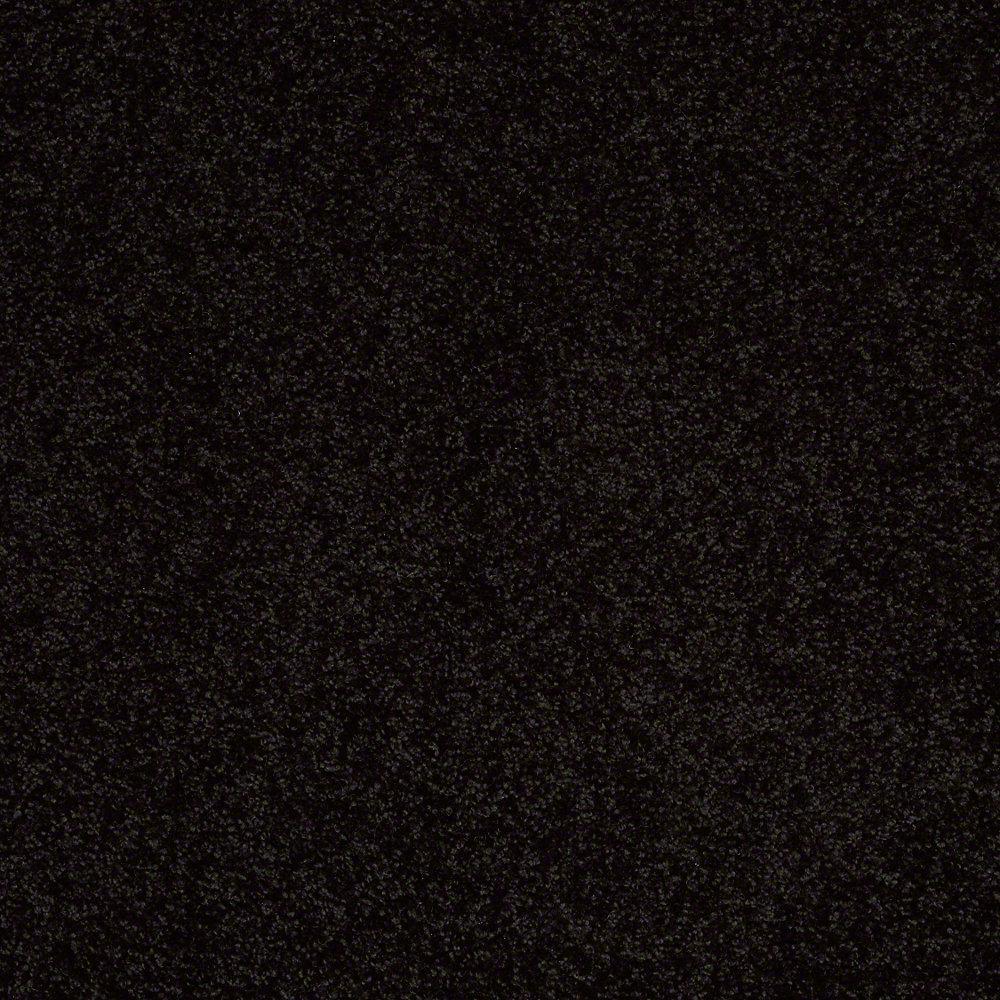 Carpet Sample - Cressbrook I - In Color Black Tie 8 in. x 8 in.
