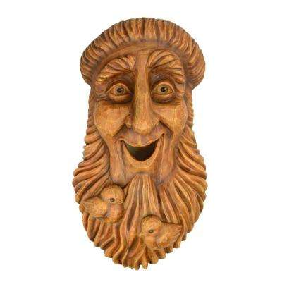 Outdoor Face St Francis Bird House Resin