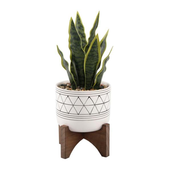 12 in. Snake Plant in Black GEO Paint White Ceramic Pot on Wood Stand