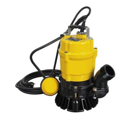 1/2 HP 2 in. Electric Submersible Utility Pump with Float