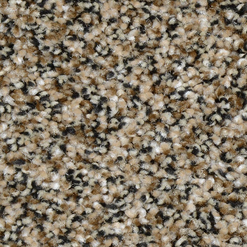 Grayson - Color Brunswick Texture 12 ft. Carpet