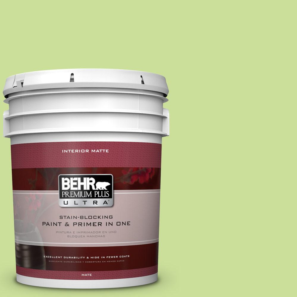 5 gal. #420A-3 Key Lime Matte Interior Paint and Primer in