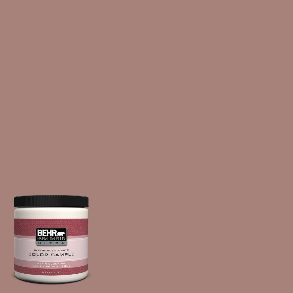 BEHR Premium Plus Ultra 8 oz. Home Decorators Collection Hickory Branch Interior/Exterior Paint Sample