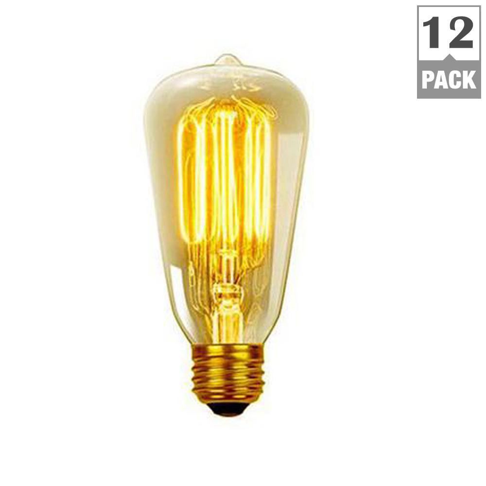 40W Vintage Edison S60 Squirrel Cage Incandescent Filament Light Bulb (12-Pack)